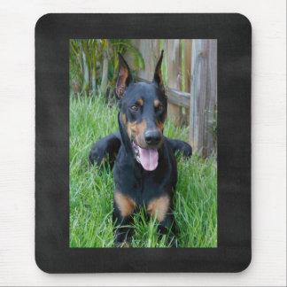 Doberman Pinscher Puppy Dog Blackboard Mousepad