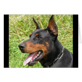 Doberman Pinscher Puppy Dog Blank Note Card