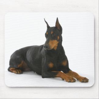 Doberman Pinscher Puppy Dog Mousepad