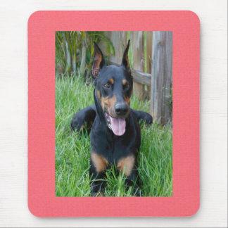 Doberman Pinscher Puppy Dog Pink Mousepad