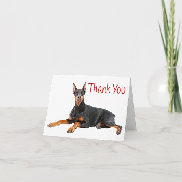 Doberman Pinscher Puppy Dog Red Thank You Blank Zazzle Com