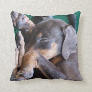 Doberman Pinscher Puppy Pillow