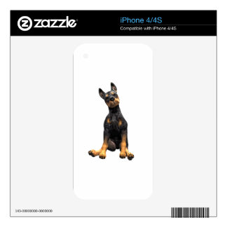 Doberman Pinscher Puppy Sitting Decal For iPhone 4S