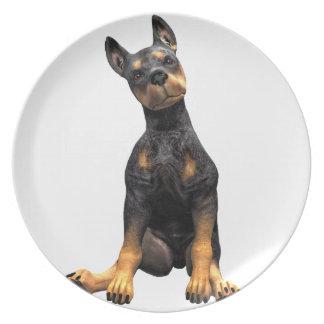 Doberman Pinscher Puppy Sitting Dinner Plate