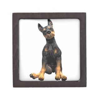 Doberman Pinscher Puppy Sitting Gift Box