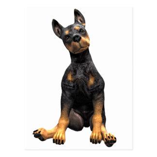 Doberman Pinscher Puppy Sitting Postcard
