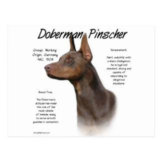 Doberman Pinscher (red) History Design Postcard