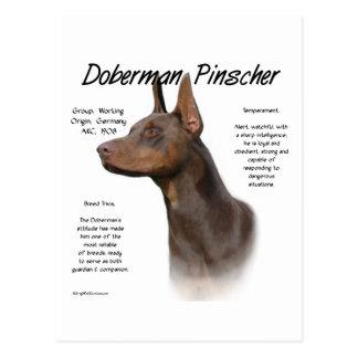 Doberman Pinscher (red) History Design Post Cards