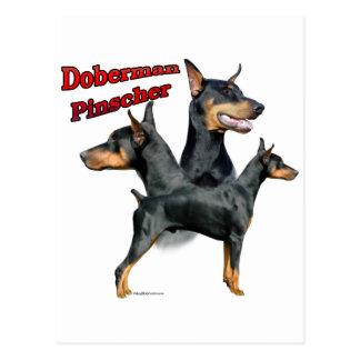 Doberman Pinscher Trio 2 Postcard