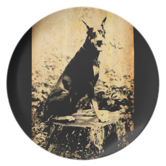 Doberman Pinscher Vintage Old Photo Plate