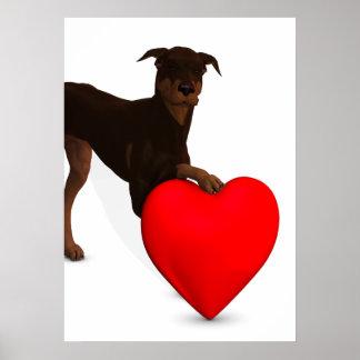 Doberman Pinscher With Heart Poster