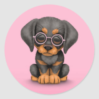 Doberman Puppy Dog with Reading Glasses, pink Round Sticker