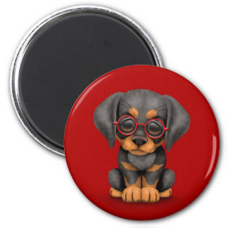 Doberman Puppy Dog with Reading Glasses, red Magnet