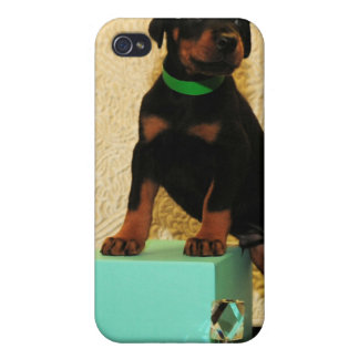 Doberman puppy from Tiffanys iphone case iPhone 4/4S Cover