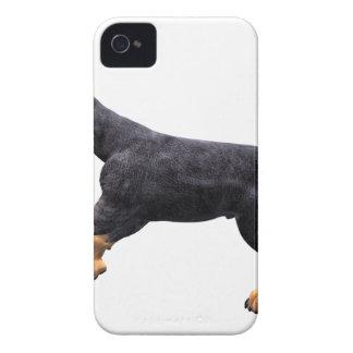 Doberman Puppy Running iPhone 4 Cases