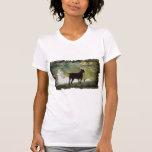 Doberman que pasa por alto un lago camisetas