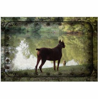 Doberman que pasa por alto un lago esculturas fotograficas