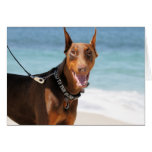 Doberman - Red - Bad to the Bone Cards