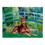 Doberman (red) - Bridge Postcards
