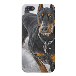 Doberman Rescue Expert Snowball 4 Universal iPhone 5 Case