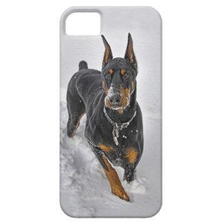Doberman Rescue Expert Snowball Catcher iPhone 5 Case