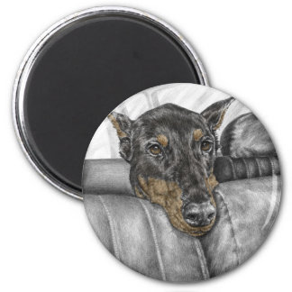 Doberman Riding in Car 2 Inch Round Magnet