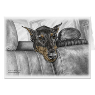 Doberman Riding in Car Card