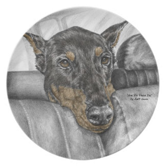 Doberman Riding in Car Dinner Plates