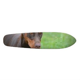 Doberman Skate Deck