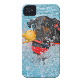 Doberman Swimming iPhone 4 Case-Mate Cases
