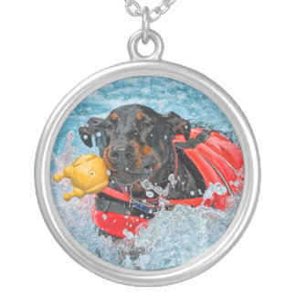 Doberman Swimming With Toy Necklace