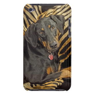 Doberman Uncropped Ears Barely There iPod Covers