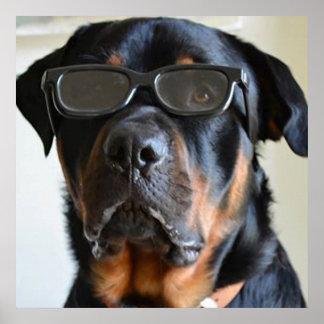 Doberman wearing glasses poster