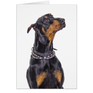 Doberman With Sneaky Look Who Me? Greeting Card