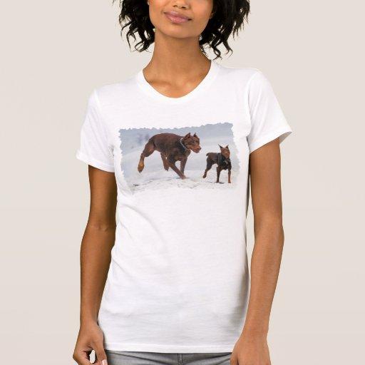 ¡Doberman y Pin del minuto - MIRADA! ¡Un mini yo! Camisetas