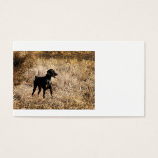 Dobermann_Bruno.png Business Card