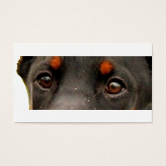 dobie eyes business card