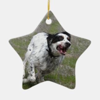 Doc, English Setter Ornaments