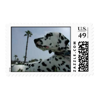 Doc Postage Stamps