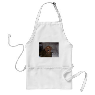 Doc the Dachshund Doxie Apron