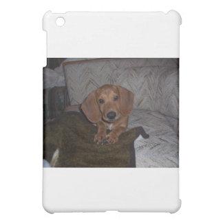 Doc the Dachshund Doxie iPad Mini Cover