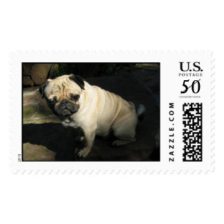 Doc the Thinker Postage