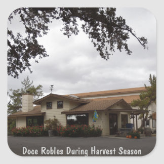 Doce Robles During Harvest Season Square Sticker