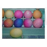 Docena huevos coloreados, Pascua Felicitacion