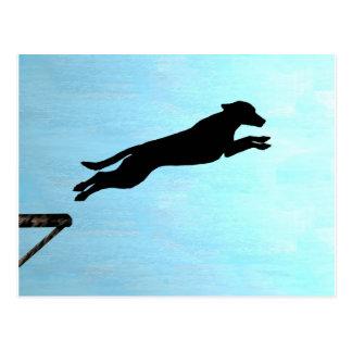 Dock Jumping Dog Postcard