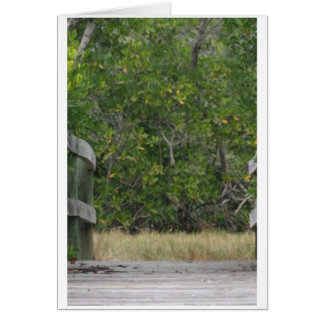 Dock leading into green mangrove stand stationery note card