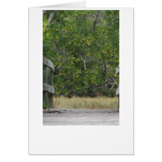 Dock leading into green mangrove stand greeting card