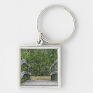 Dock leading into green mangrove stand keychain