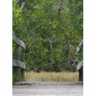 Dock leading into green mangrove stand photo sculpture ornament
