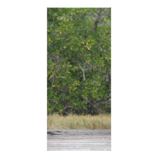 Dock leading into green mangrove stand customized rack card